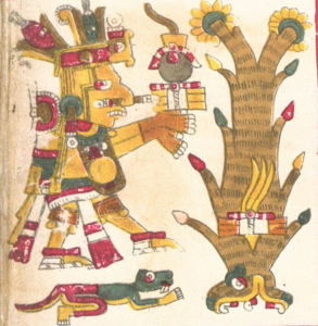 Cinteotl, Codex Borgia, pl.14